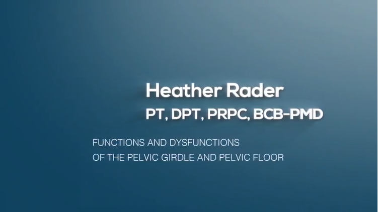 Functions and Dysfunctions of the Pelvic Girdle and Pelvic Floor