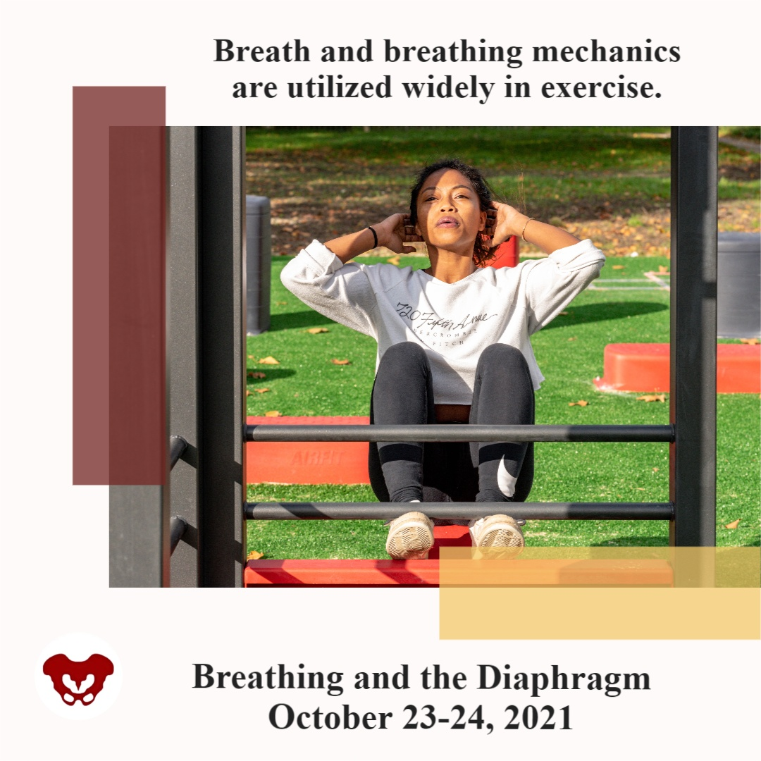 Breathing Dynamics and Exercise