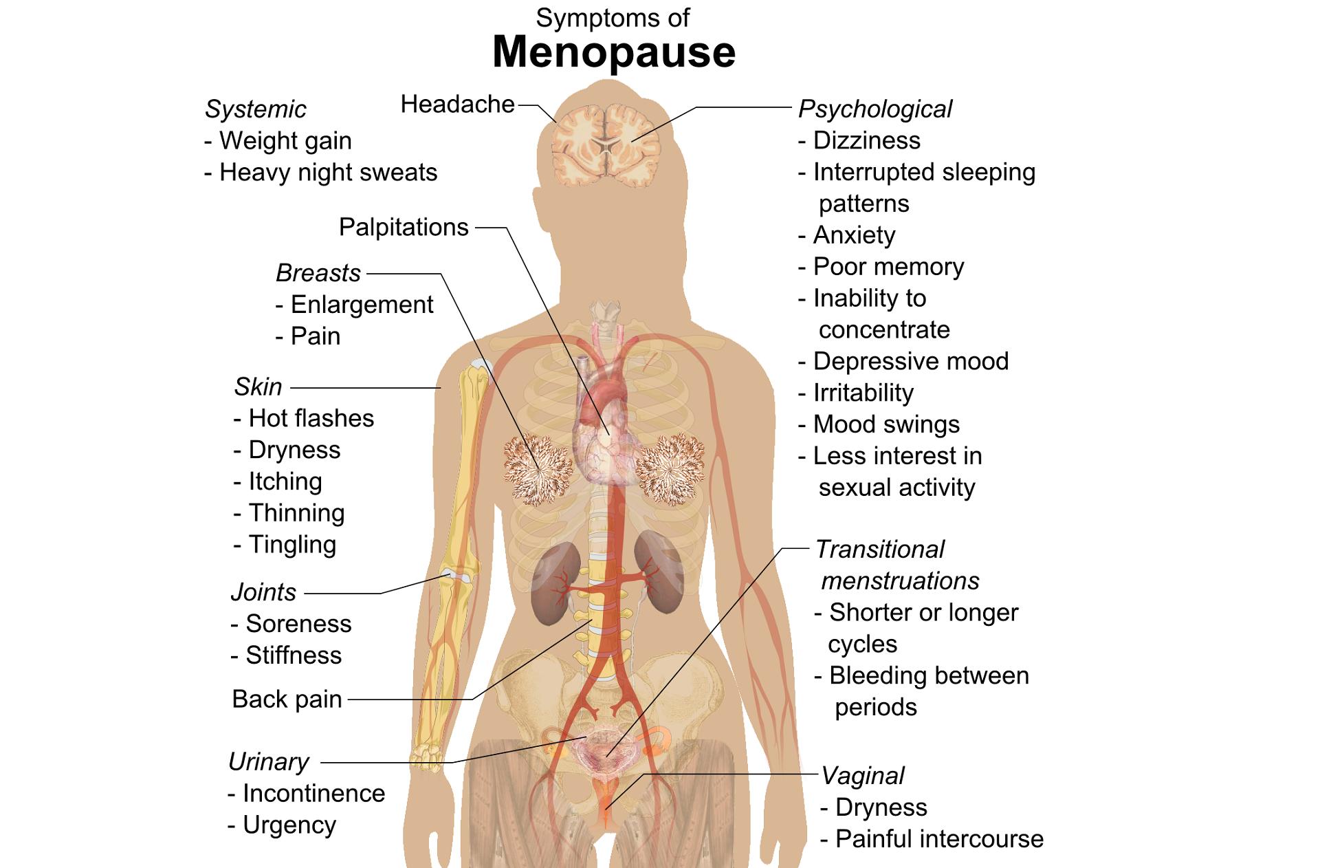 Pelvic, Sexual, and Bone Health at Menopause